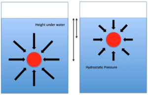 Diagram showing hydrostatic forces. Magnitude of the hydrostatic force is larger as it goes deeper below the surface.