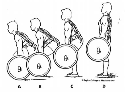 Graphic of a side view of the proper deadlifting motion