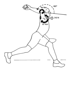 Torques and forces on the shoulder and elbow at the end of the arm cocking phase.