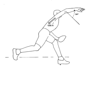Force and position of the shoulder and elbow during the arm deceleration phase.
