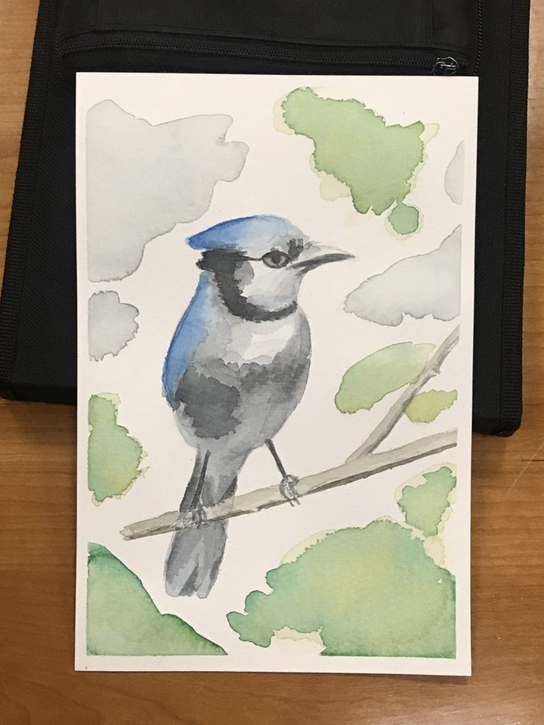 Watercolor painting of a Bluejay bird
