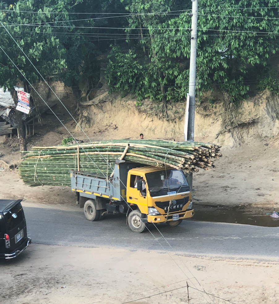 Bamboo lumber on a yellow truck.