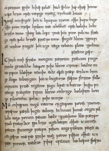 Translating Exeter Book Riddles Medieval Studies Research Blog Meet Us At The Crossroads Of Everything