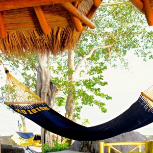 Custom Elevation ND Hammock