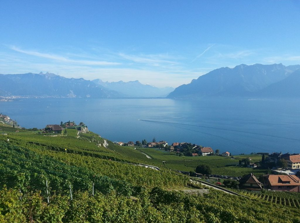 Vine Terraces of Lavaux and the Leman lake in Switzerland by Theo Baracchini (Wikimedia)