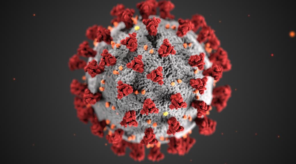 Coronavirus Form Display
