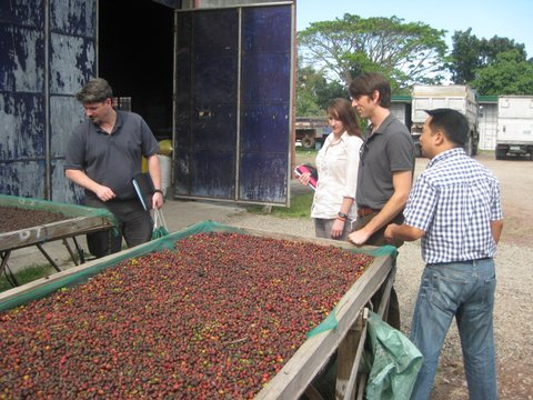 The drying facilities for Cafe de Lipa, a Filipino coffeeshop that sources most of its beans from local farmers.