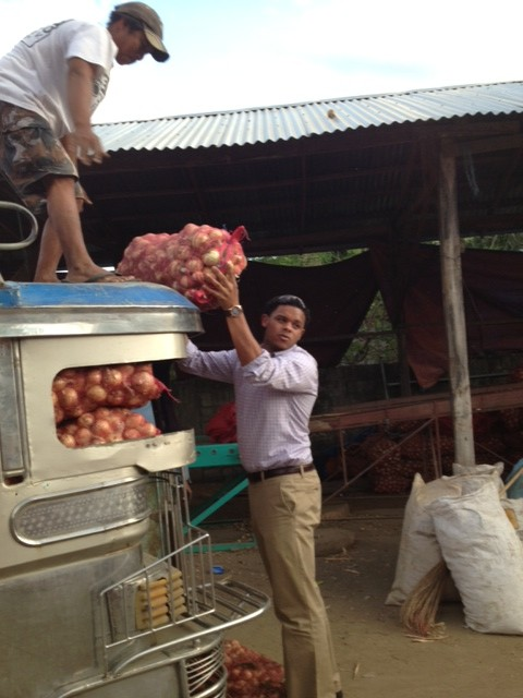 Mauri Miller (law student) helping to unload onions from Kalasag cooperative.