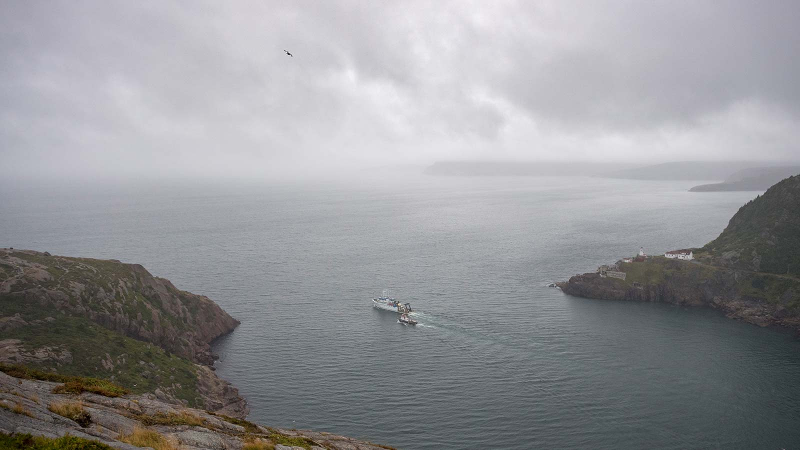 Fog moves in as the research vessel Hugh R. Sharp departs St. John's Harbor in Newfoundland, Canada. The ship carried dozens of meteorological instruments gathering data in coordination with the land-based instruments, as well as a half dozen scientists from different universities and agencies for the C-FOG Project.
