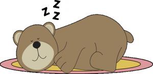 bear-sleeping-on-rug