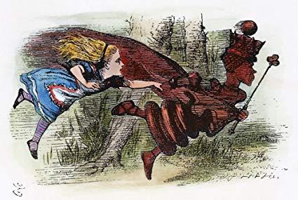 The Red Queen- Matt Ridley
