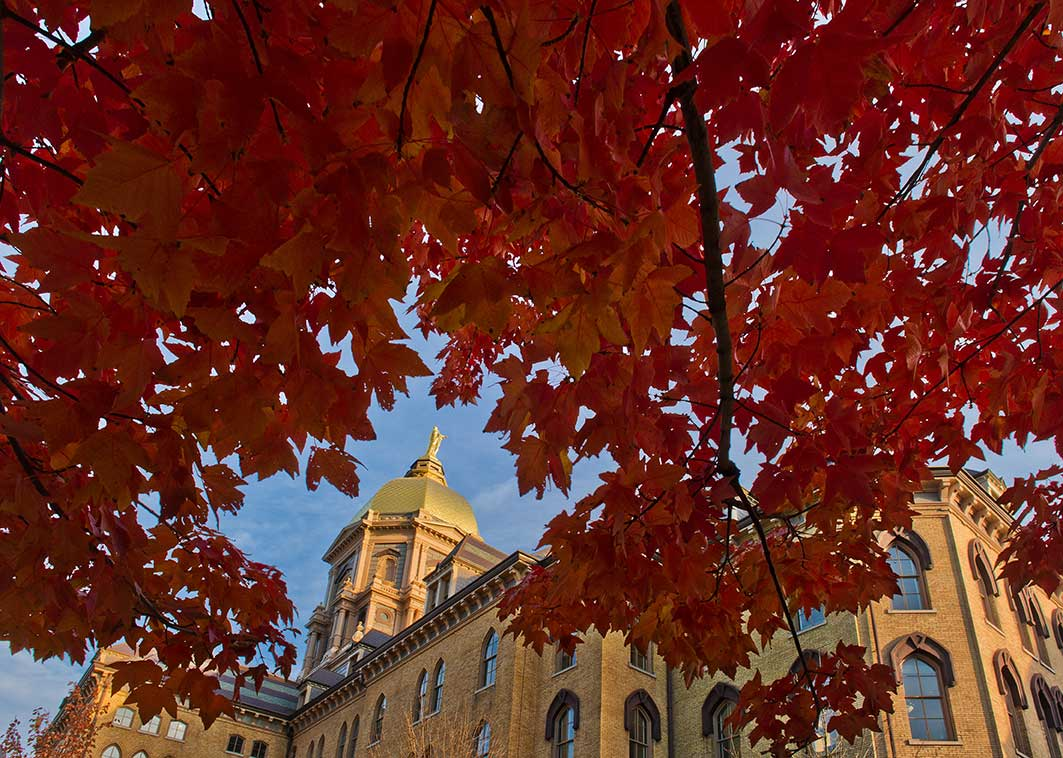 Oct. 29, 2013; Main Building framed by fall leaves. Photo by Matt Cashore/University of Notre Dame