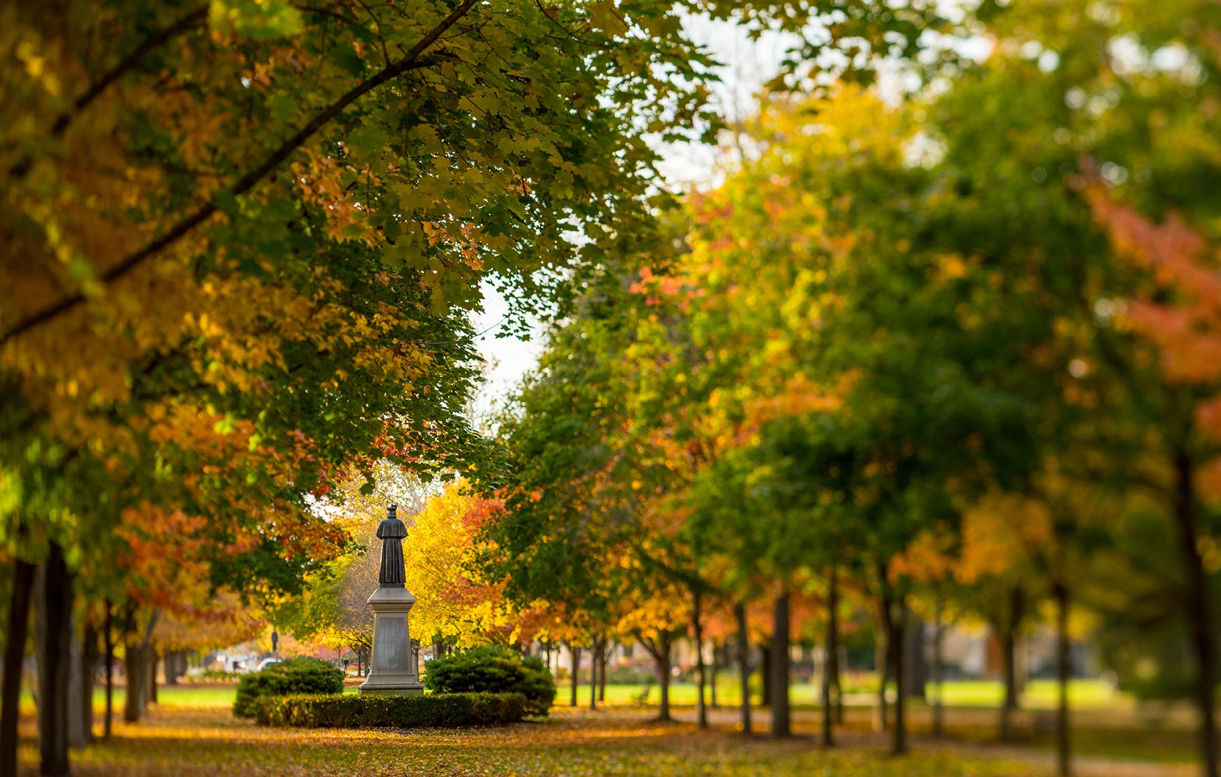 Oct.27, 2014; Main Quad (Photo by Matt Cashore/University of Notre Dame)