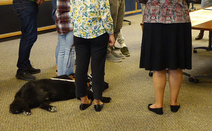 Service Animals in Special Collections