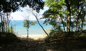 The Indiana Dunes on the shore of Lake Michigan