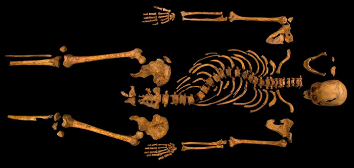 Richard-iii-remains