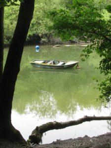 A boat in the Rhine