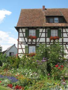 Flowers on Reichenau Island