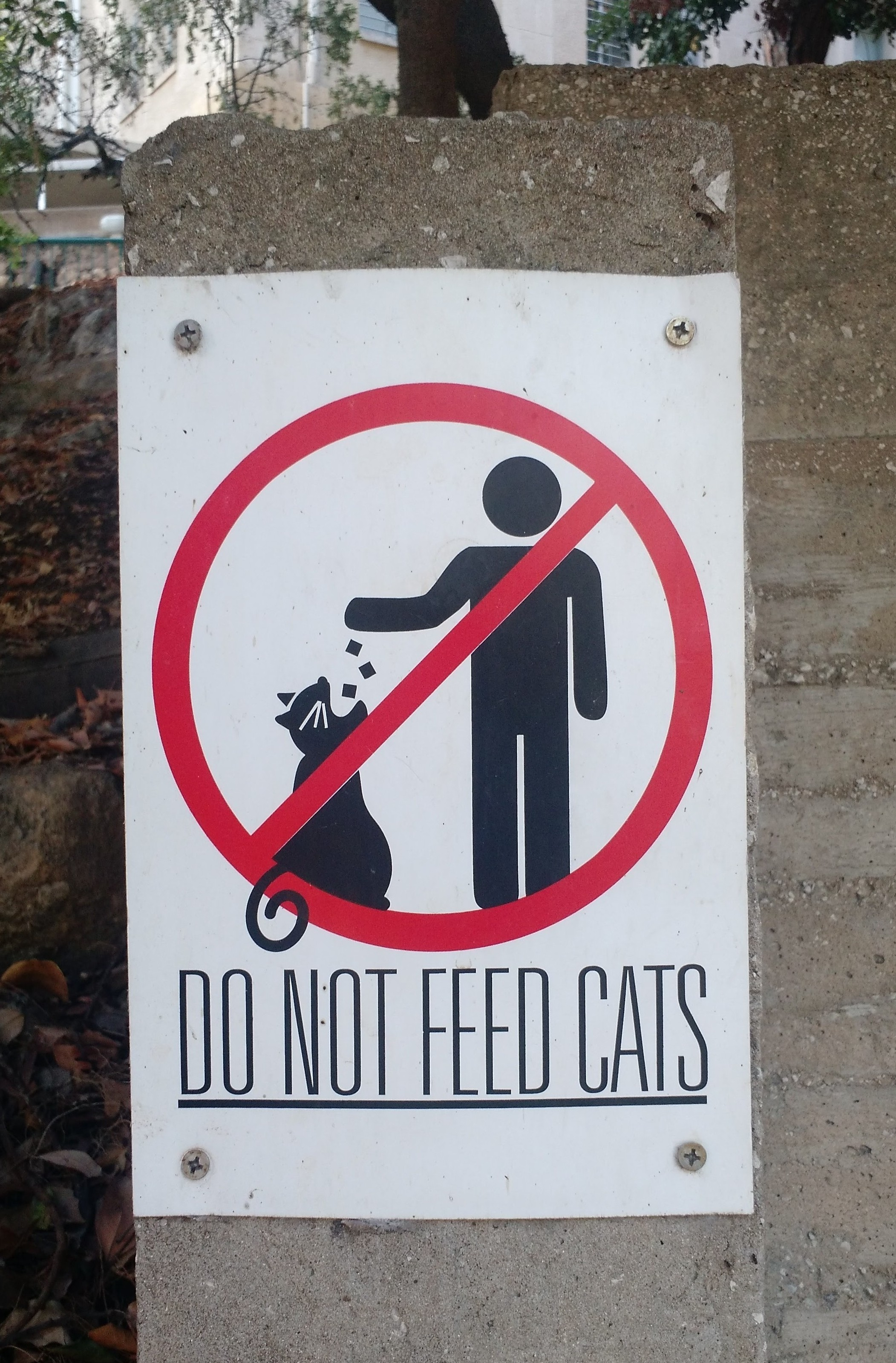 Do not feed the cats